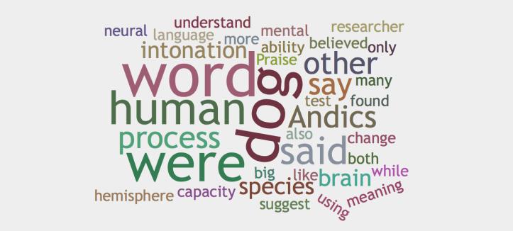 wordcloud-3