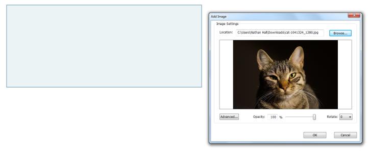 Insert an image box